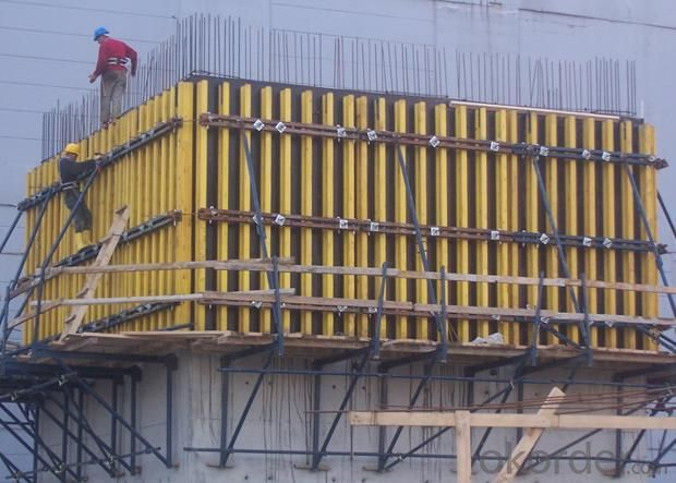 Film Faced Plywood/Building Construction Material