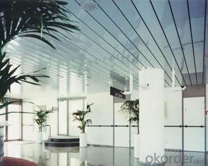 Aluminum Ceiling Panels with Different Designs