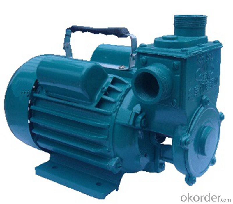 Marine Horizontal Self-priming Centrifugal Pumps With High Quality