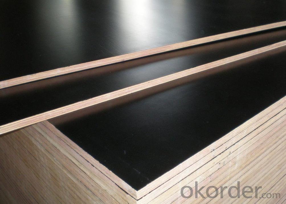 FIlm Faced Plywood(Marine Plywood) WBP Glue Brown Black