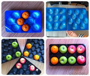 Nested Blister Fruit Packing Tray 22 Cavity