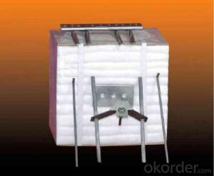 Refractory Ceramic Fiber Module for Steel Industry