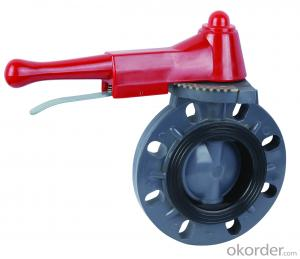 Butterfly Valve Stainless Steel Threaded Directional with Plastic Handle