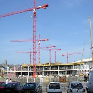 Tower Crane Luffing Cranes for Building