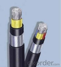 Cu or Al conductor, XLPE Insulated, PVC Sheathed Power Cable