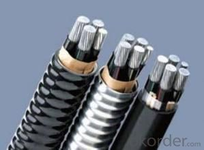 All Aluminum Alloy conductor/  All-Aluminum Alloy Conductor