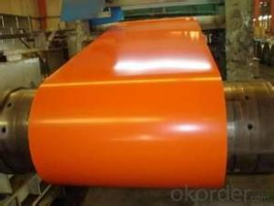 Prepainted Galvanized Rolled Steel Coil -SGCC