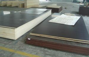 Film Faced Plywood  High Quality Poplar Core Black
