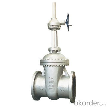 Gate Valve Carbon or Stainless Steel Gost ANSI JIP
