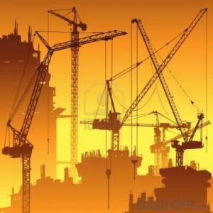Tower Crane TC5613 Equioment Building Machinery Distributor Sales