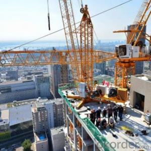 Tower Crane TC7135 ConstructionEquipment Building Machinery Distributor Sale