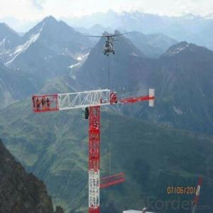 Tower Crane TC6520 Construction Equipment Wholesaler Sale