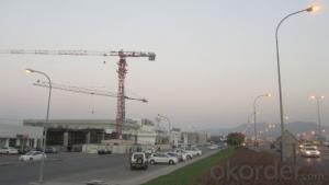 Tower Crane TC6016 Construction Equipment Wholesaler Sale