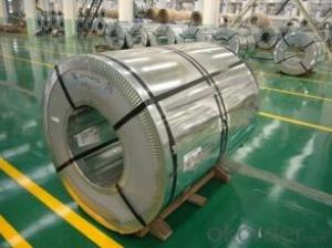Tinplate Coil, Made of MR and SPCC Steel (T-051)