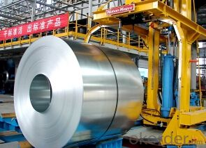 Iron Rolled Steel Coil for Building Materials
