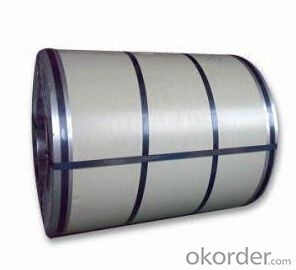 Prepainted Zinc Coated Hot DIP Galvanized Steel Coils