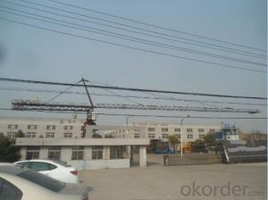 12 Tons TC6036 Tower Crane H3/36B High Quality