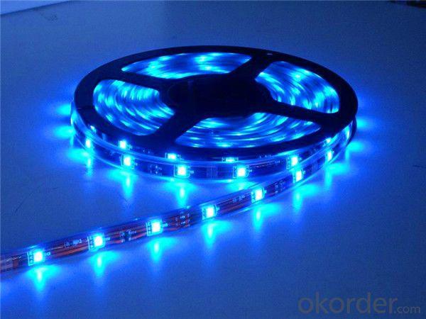 ed motion sensor led strip light 5050 12vdc 60led/m with 24key remote controller