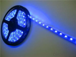 5050 led strip light waterproof colorful super bright SMD 60leds 2 years warranty