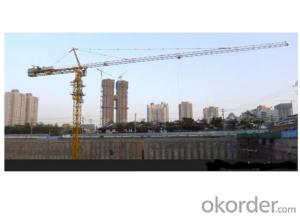 TOWER CRANE H6015B TC6015 High Quality 12ton