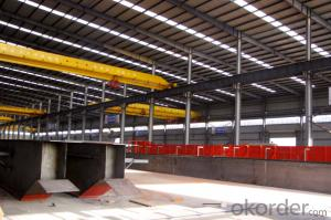 Qy Model Insulation Overhead Crane with Hook