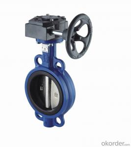 Butterfly Valve  with Plastic Handle Made in China
