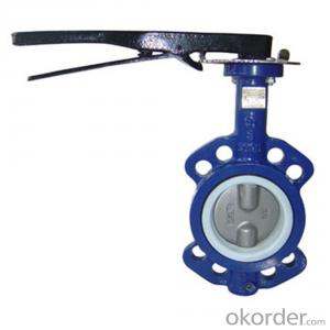 Butterfly Valve Stainless Steel Threaded Directional Made in China on Sale