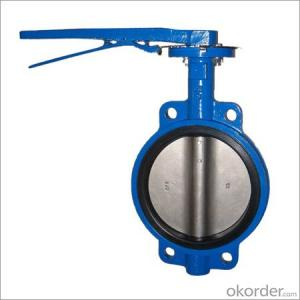 Butterfly Valve Stainless Steel Threaded  Made in China