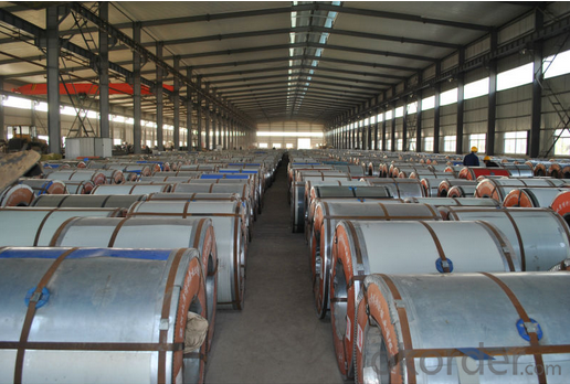 Customized Color Coated Galvanized PPGI Steel Coil/PPGL Roofing Sheets