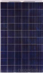 Poly Solar Modules with Competitive Price