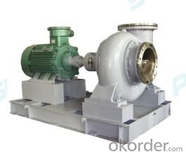 Chemical Process Pump CZ Series of High Anticorrosive Ability