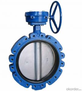 Butterfly Valve on Hot Sale with Worm Steel Gear Actuated Flange Triple Eccentric from China