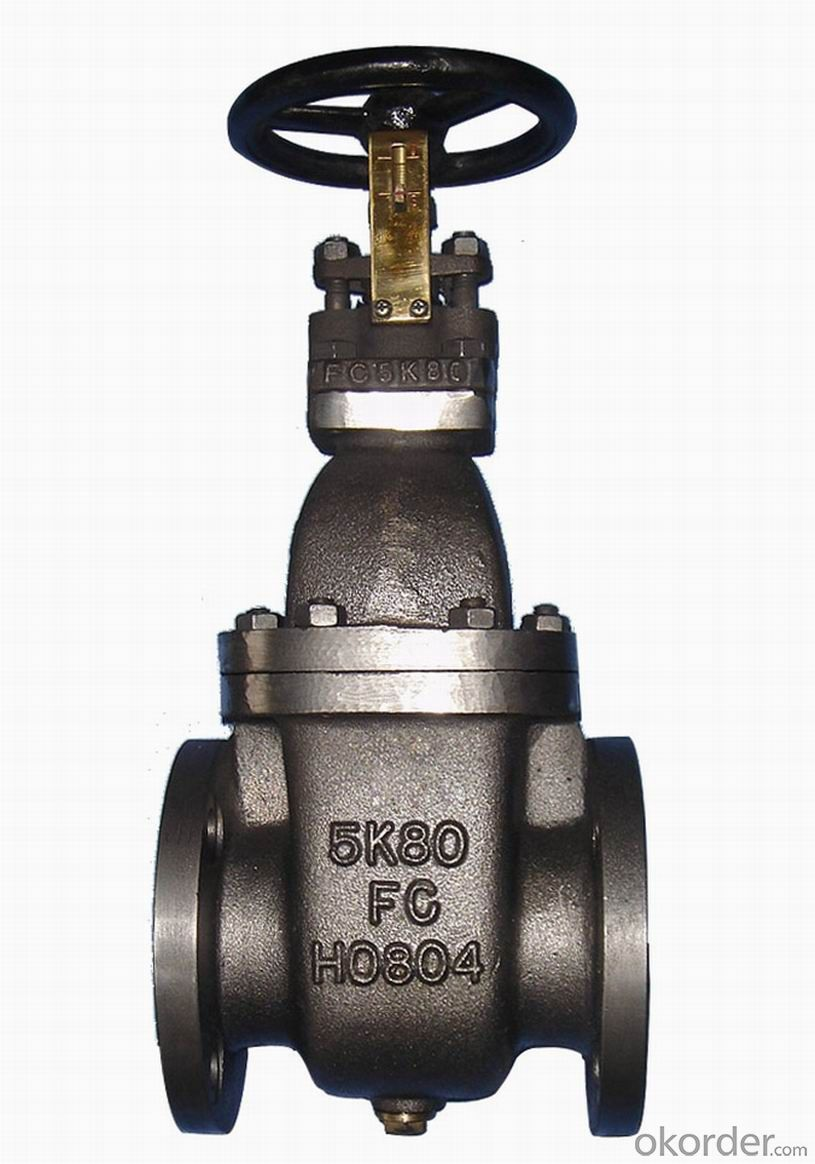DN100  Gate Valve PN16 from China on Sale