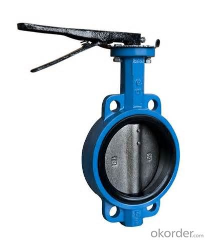 Butterfly Valve on Sale with Worm Gear Actuated Flange Triple Eccentric