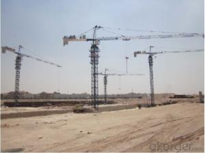 Tower Crane TC5516 Construction Equipment Building Machinery Distributor