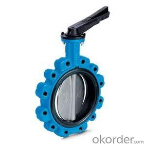 Butterfly Valve Made in China Gear Actuated Flange Triple Eccentric