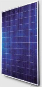 CNBM Crystalline Solar Panels Exported to Pakistan