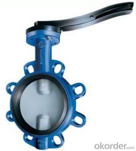 Butterfly Valve on Hot Sale with Steel Gear Actuated Flange Triple Eccentric