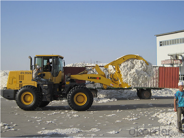 Cube Meter Front Bucket Wheel Loader/Wheel Loader - Cl920