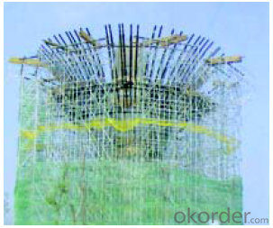 Ring Lock  Scaffolding  Meet Different Size and Load Construction