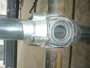 Galvanized Standard of Cuplock System Scaffolding