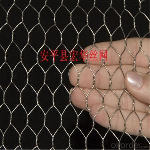 Hexagonal wire mesh、Six angle net、Galvanized angle six