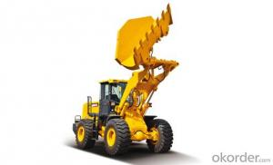 LW500KN (side dumping) Wheel Loader with CE Certification Buy at Okorder