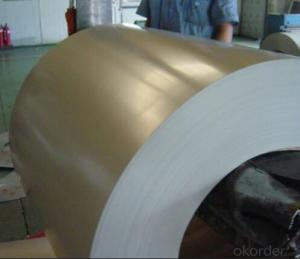 Pre-painted Galvanized Steel Coil/Color Coated SGCC SPCC