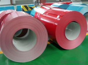 Prepainted Galvanized Steel Coil for Electrical Industry