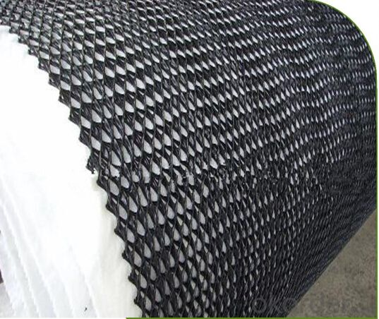 Tri HDPE Geocomposite Drainage for Slope Protection Best Quality
