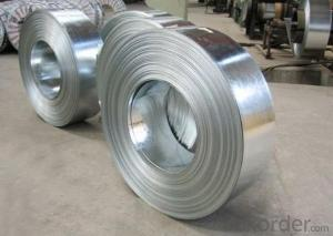 Stainless Steel Coil 202 in Stock with Low Moq