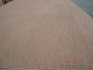 Bintangor Face and Back Plywood for Dook Skin