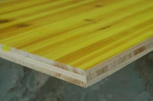 Three PLY Shuttering Panel Plywood for Contruction 1000X500X27MM