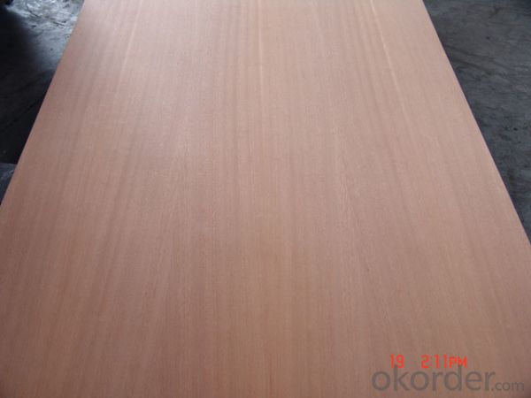 Sliced Sapele Face and Back Plywood Poplar Core for furniture